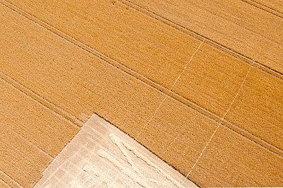 Getreidefeld in der Ernte aus Vogelpersektive - p1079m1184967 von Ulrich Mertens