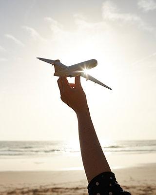 Flugzeug im Sonnenlicht - p1124m1112531 von Willing-Holtz