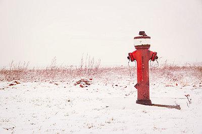 Roter Hydrant im Schnee - p330m793982 von Harald Braun