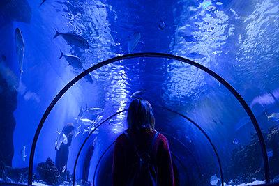 Caucasian woman admiring fish in aquarium - p555m1504155 by Dmitriy Bilous