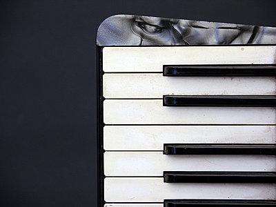 Tastatur eines alten Akkordeons - p627m1035896 von Christian Reister