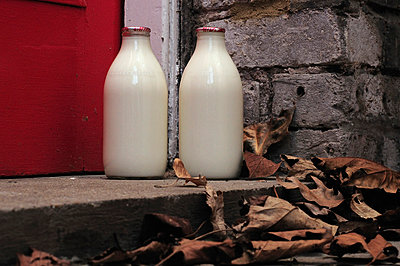 Close Up Milk Bottles - p1072m829344 by Neville Mountford-Hoare