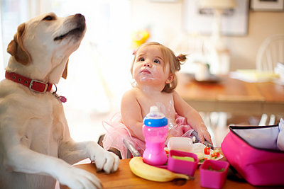 Caucasian girl and dog eating at table - p555m1311400 by Shestock