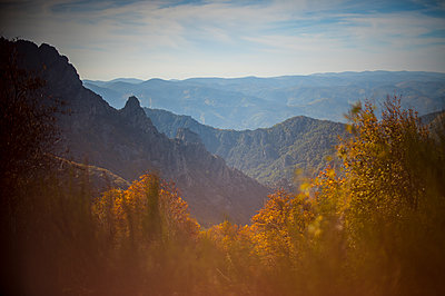 Mountain and forest in autumn - p1007m1144443 by Tilby Vattard