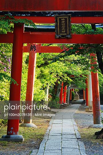 05/13/2015 - p1100m2078135 by Mint Images