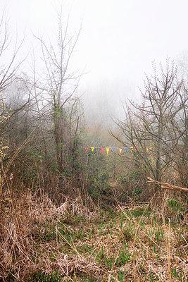 Wimpel in der Landschaft - p597m1332407 von Tim Robinson