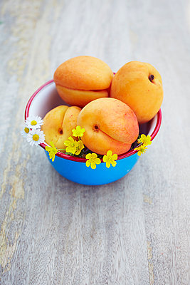 Apricot - p464m1071824 by Elektrons 08