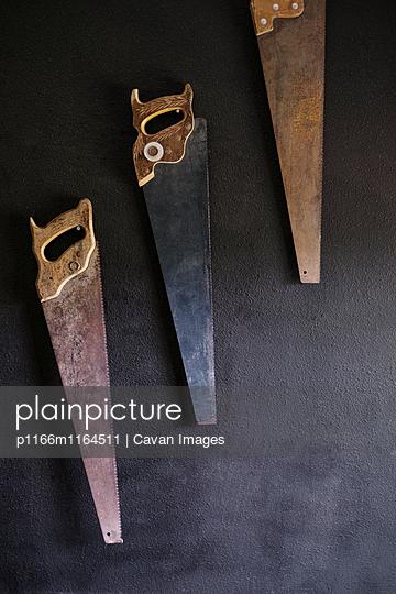 p1166m1164511 von Cavan Images