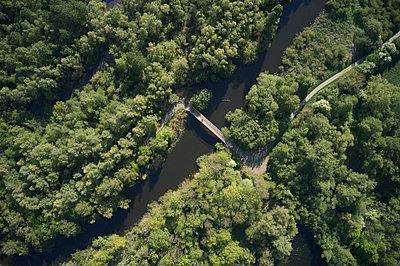 Fluss und Wald - p1294m2231498 von Sabine Bungert