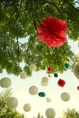 Lanterns on tree - p375m1564625 by whatapicture