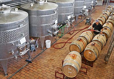 Weingut mit modernem Weinkeller und Weinabfüllanlage - p390m1556471 von Frank Herfort