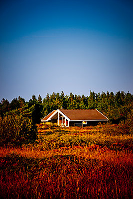 Holiday home in the dunes - p248m951424 by BY