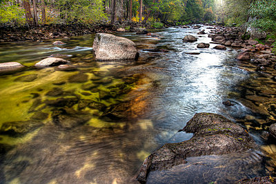 River running through forest - p575m805251f by Sven Halling