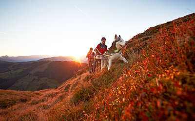 Mountain hiking with dog at sunrise - p704m1468168 by Daniel Roos