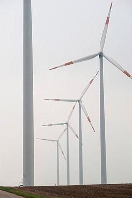 Windpark Bedburg - p1079m881304 von Ulrich Mertens