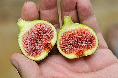 Figs - p8850184 by Oliver Brenneisen