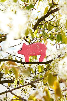 Schweinchen im Baum - p2370742 von Thordis Rüggeberg