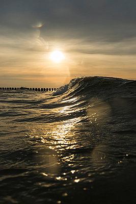 Germany, Mecklenburg-Western Pomerania, Prerow, Baltic Sea, sun rise - p300m873705 by Stefanie Baum