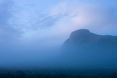 Haytor surrounded by mist on a moody summer evening, Dartmoor National Park, Devon, England, United Kingdom, Europe - p871m711388 by Adam Burton