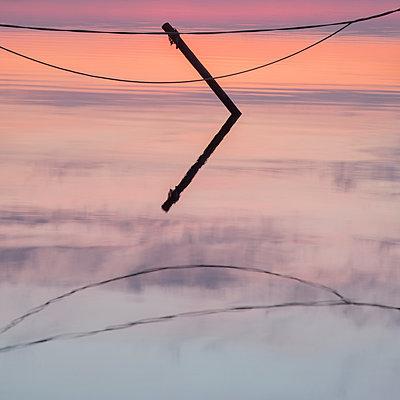Sunset - p992m1045238 by Carmen Spitznagel