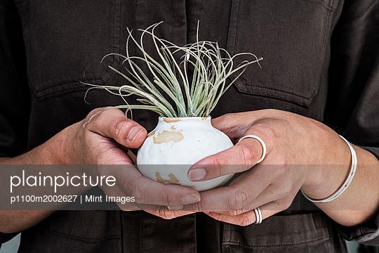 p1100m2002627 von Mint Images