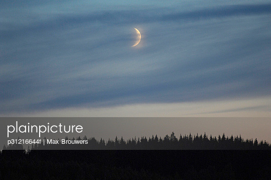 A moon over a forest Sweden. - p31216644f by Max Brouwers
