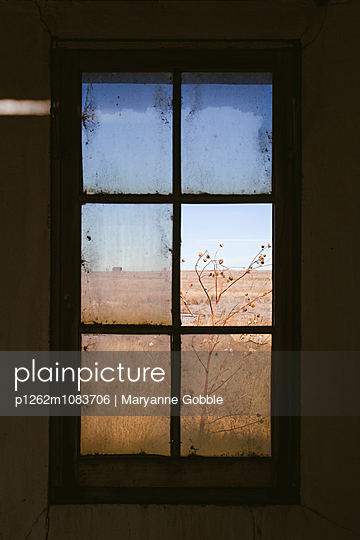 Window in Abandoned Farmhouse - p1262m1083706 by Maryanne Gobble
