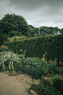 Garden bench in the park, Castle Ward, Northern Ireland - p1681m2283649 by Juan Alfonso Solis
