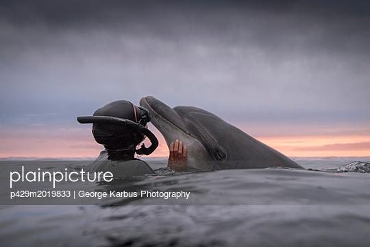 p429m2019833 von George Karbus Photography