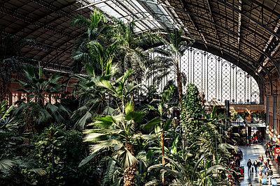 Madrid Atocha railway station - p1329m2161175 by T. Béhuret