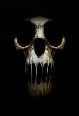 Skull - p1228m1109083 by Benjamin Harte