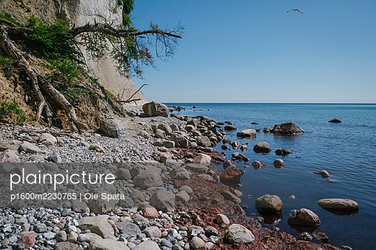 Kreidefelsen an der Ostsee Steilküste auf Rügen - p1600m2230765 von Ole Spata