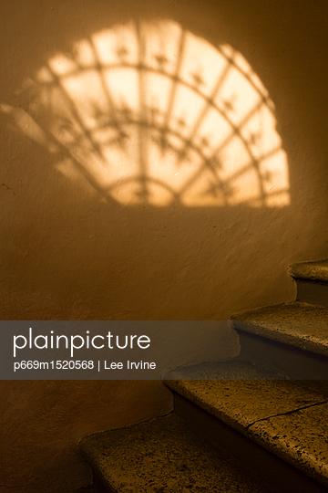 p669m1520568 von Lee Irvine
