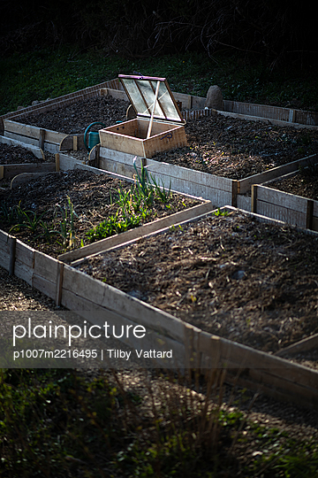 Small greenhouse in vegetable garden - p1007m2216495 by Tilby Vattard