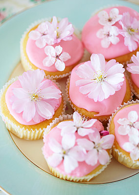 Pink fairycakes decorated with flowers - p349m2167865 by Sussie Bell