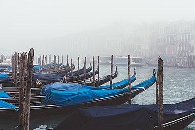 Rows of gondolas on misty canal, Venice, Italy - p429m1407954 by Eugenio Marongiu