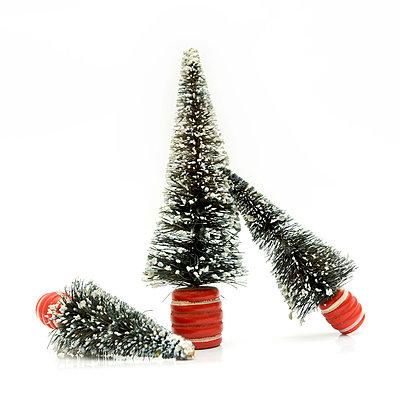 Christmas trees - p813m701029 by B.Jaubert