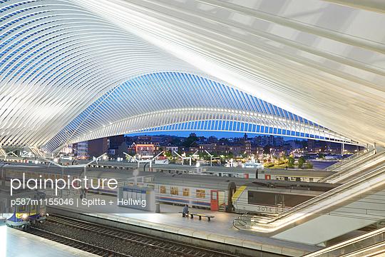 Bahnhof Liège-Guillemins in Lüttich - p587m1155046 von Spitta + Hellwig