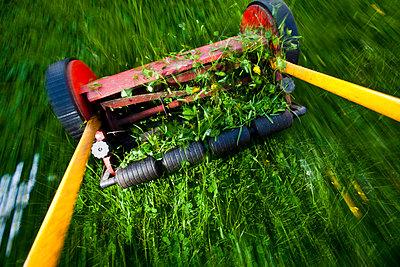 High angle view of lawn mower cutting grass - p426m719667f by Katja Kircher