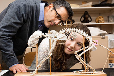 Teacher and student working in natural history museum - p555m1420164 by Hill Street Studios