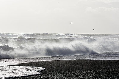 Stormy beach in winter - p719m1123212 by Rudi Sebastian