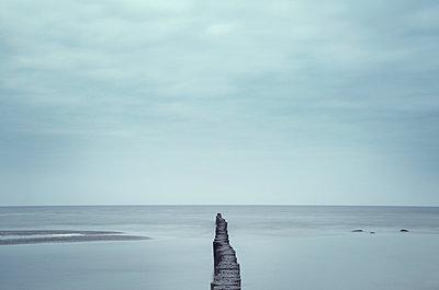 Buhne an der Ostsee - p992m1016122 von Carmen Spitznagel