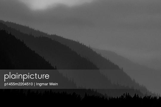 Alsaka, Conifer fores in gloomy mood - p1455m2204510 by Ingmar Wein
