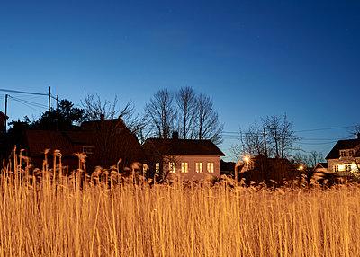 Haus mit Feld bei Nacht - p1124m1424209 von Willing-Holtz