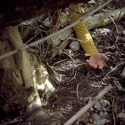 Underneath branches - p990m694928 by Michael Dooney