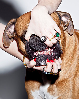 Woman showing her dog's tooth - p930m814799 by Phillip Gätz