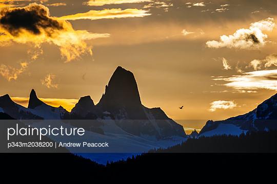 p343m2038200 von Andrew Peacock