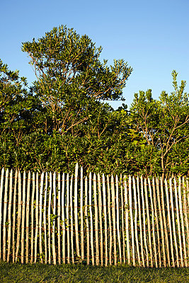Fence - p464m883064 by Elektrons 08