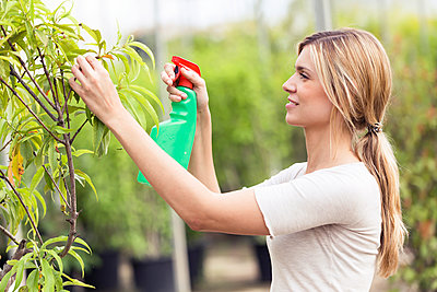 Beautiful young woman taking care of a plant in the greenhouse - p300m2132030 by Josep Suria