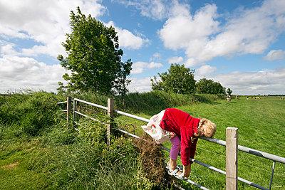 Friesland - p1132m1016297 by Mischa Keijser
